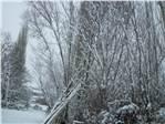 marabuzda kış 2012...