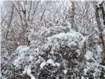 marabuzda kış 2012 kökoler kabilesi derviş eminin evi.......