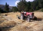 tarımsal faaliyet