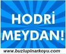 Şenoz Vadisi`nin SİT alanı ilan edilmesi teklifi reddedildi...