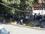 pervari çınar altı pazar yeri...
