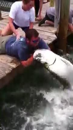 balık adamın elini yakalarsa zor bırakır...
