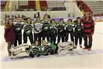 TBHF 2017-2018 Kadınlar Buz Hokeyi 1. Ligi Müsabaka Programı Belli Oldu