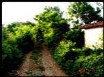 poyrazlı köy ici...