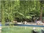 Gölbaşı Tesisleri Havuz...